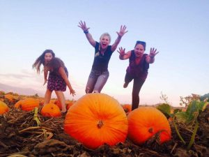 Great Pumpkin Festival at Kalyra Winery @ Kalyra Winery