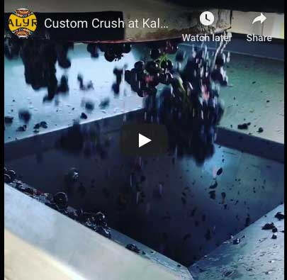 Custom Crush at Kalyra Winery